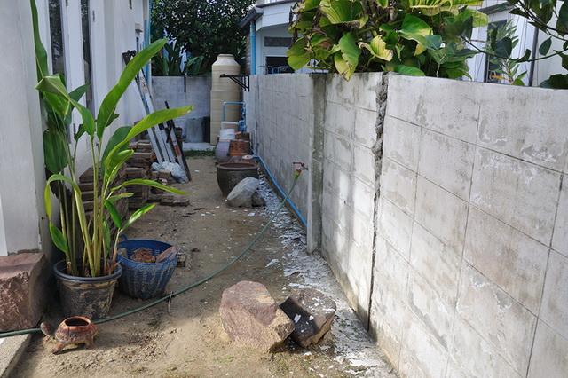 vertical garden review (7)