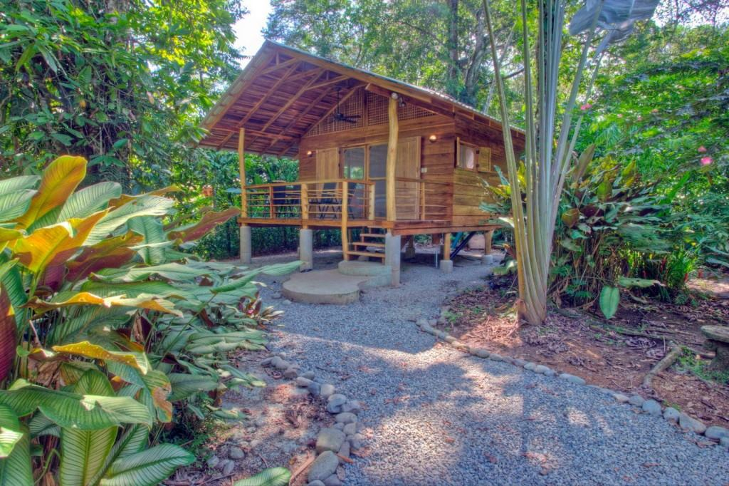 wooden natural retreat house1