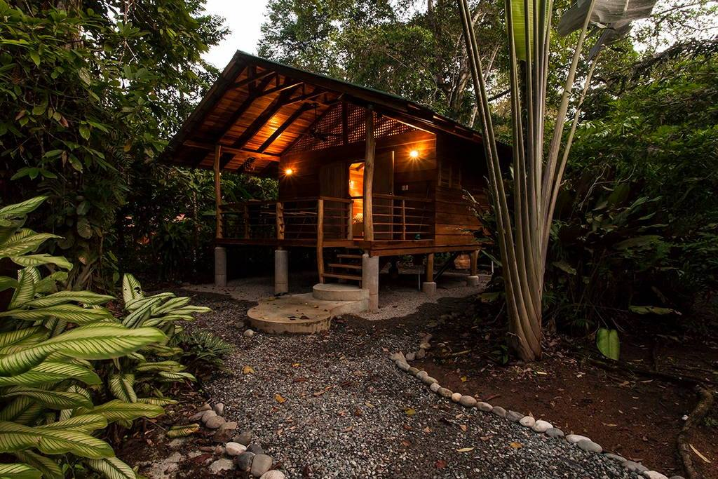 wooden natural retreat house8