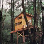 บ้านสวนขนาดเล็ก ยกพื้นสูง โครงสร้างไม้ ไอเดียที่เหมาะกับบ้านสวน บ้านพักชั่วคราว