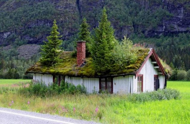 12-scandinavian-homes-with-green-roofs (1)