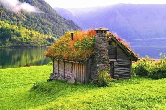 12-scandinavian-homes-with-green-roofs (12)