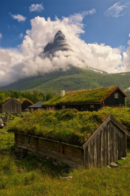 12-scandinavian-homes-with-green-roofs (8)