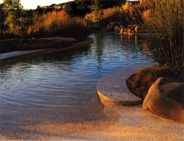 17-engrossing-natural-swimming-pools (10)