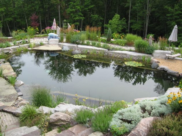 17-engrossing-natural-swimming-pools (14)