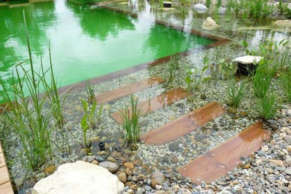17-engrossing-natural-swimming-pools (15)