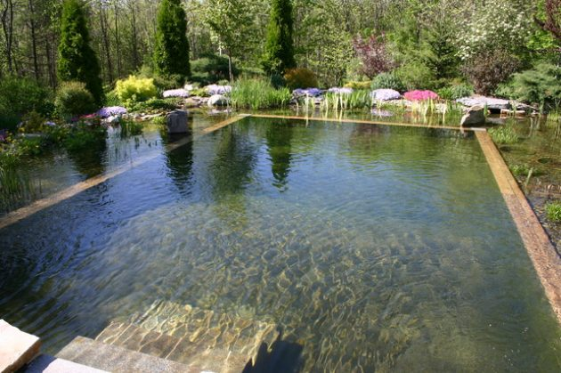17-engrossing-natural-swimming-pools (16)