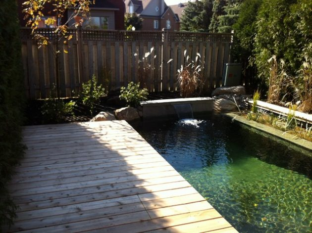 17-engrossing-natural-swimming-pools (17)