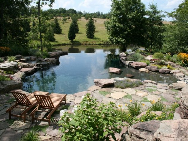 17-engrossing-natural-swimming-pools (3)