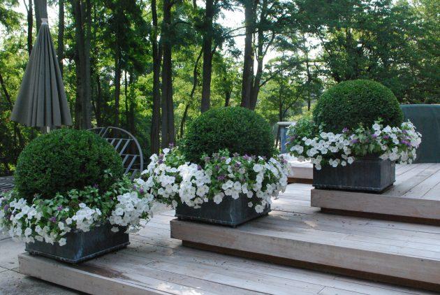 23-spring-garden-trends (18)