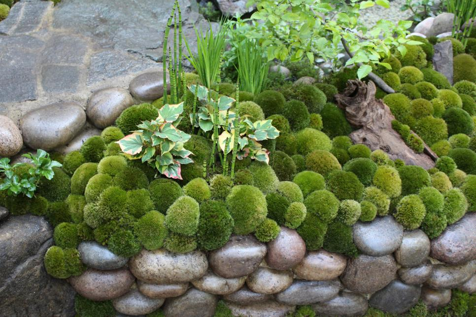50 ideas for the garden (10)