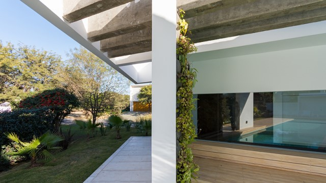 Modern house white tone with swimming pool Garden Nature (12)