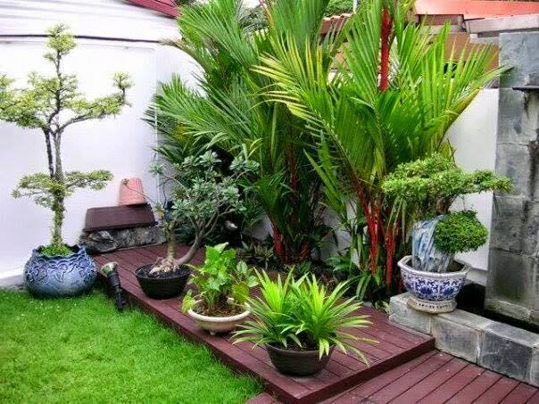 garden in fence ideas (27)