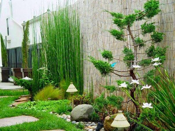 garden in fence ideas (5)