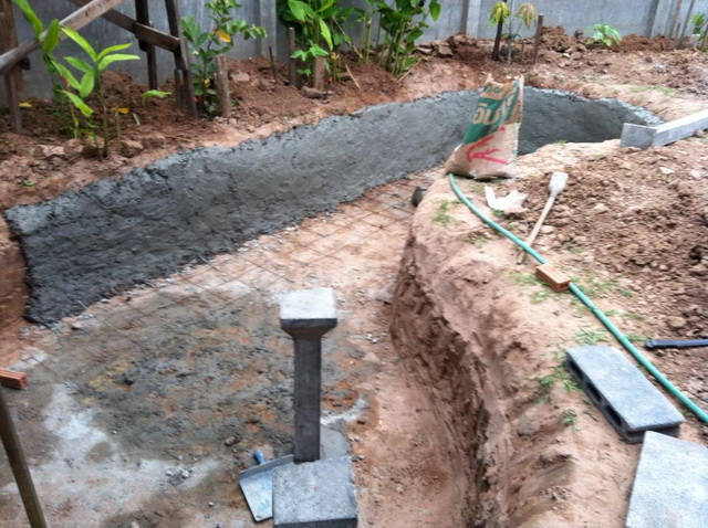 long fish pond diy review (11)