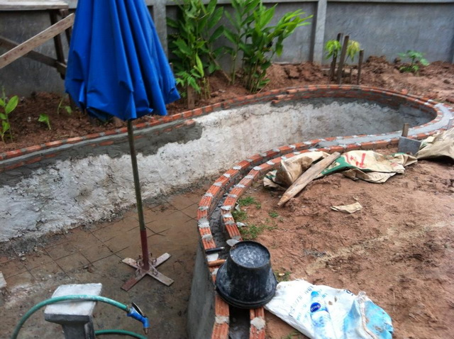 long fish pond diy review (12)