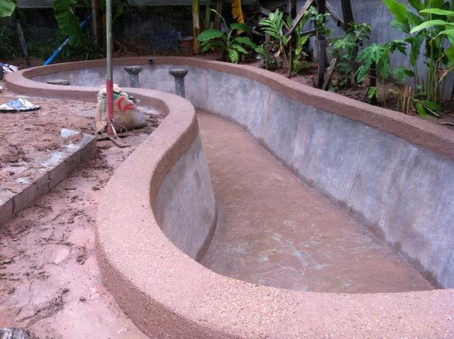 long fish pond diy review (22)