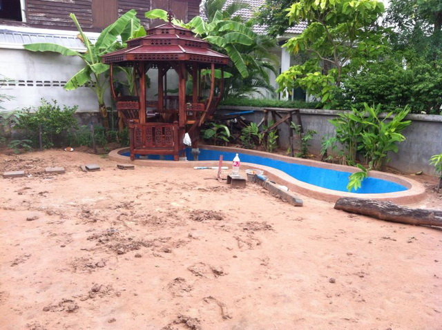 long fish pond diy review (26)