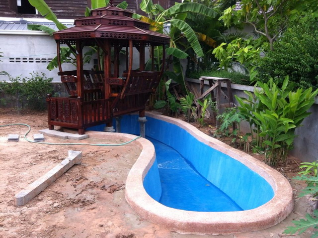 long fish pond diy review (28)