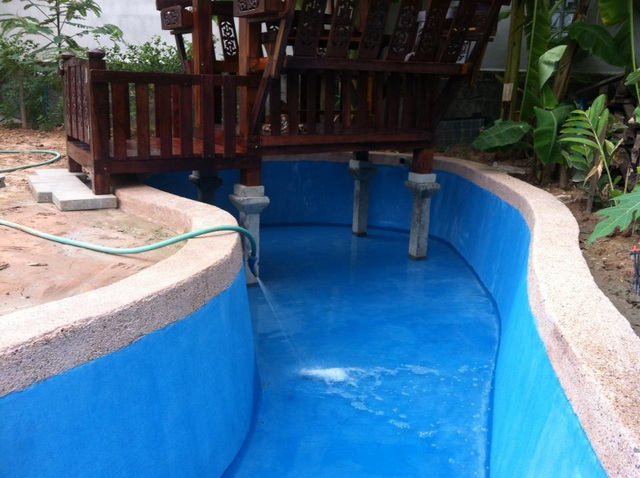 long fish pond diy review (29)