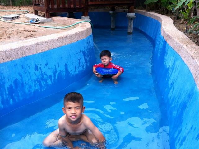 long fish pond diy review (30)