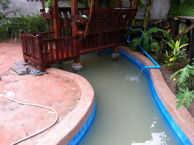 long fish pond diy review (32)