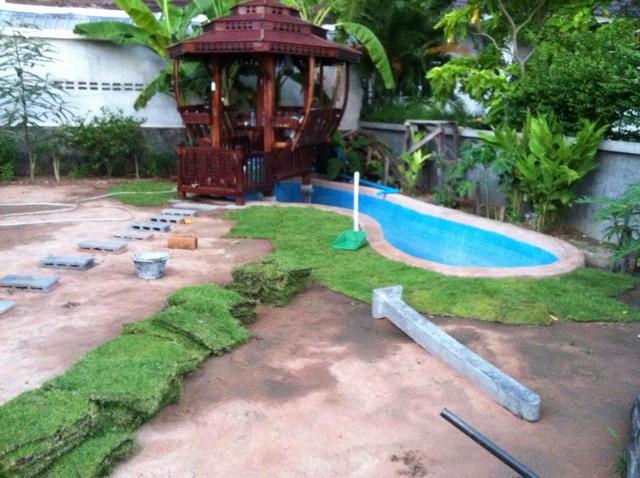 long fish pond diy review (33)