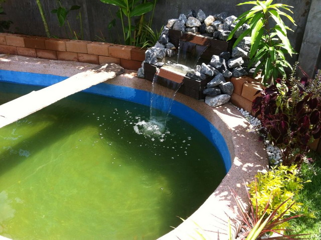 long fish pond diy review (41)