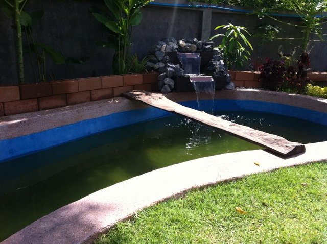 long fish pond diy review (42)