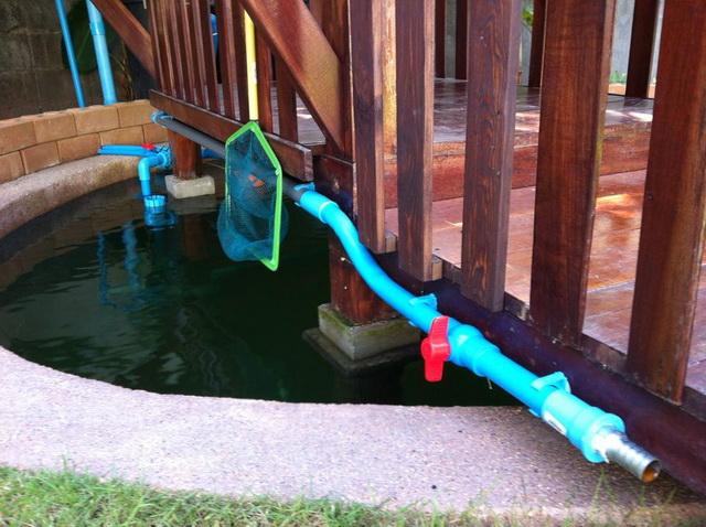 long fish pond diy review (44)