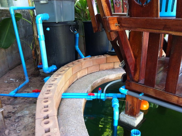 long fish pond diy review (45)