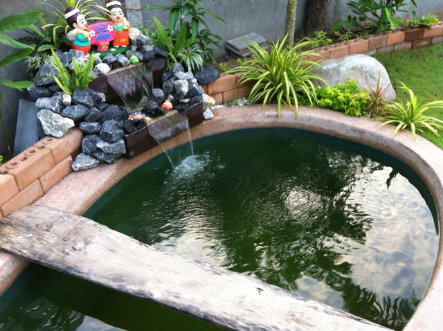 long fish pond diy review (46)