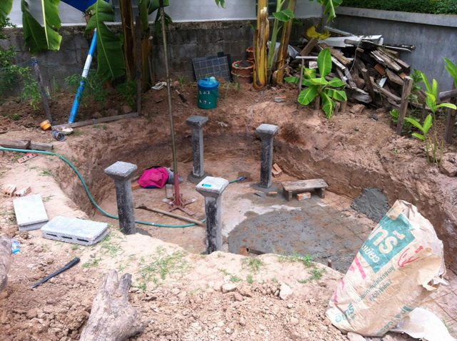 long fish pond diy review (8)
