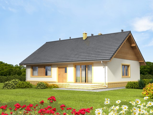 wooden contemporary compact home (3)
