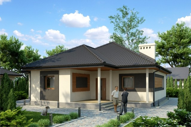 1-story contemporary home 2 bedroom 2 bathroom (1)