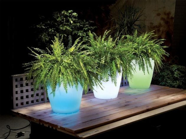 15-astonishing-illuminated-planter-designs (1)