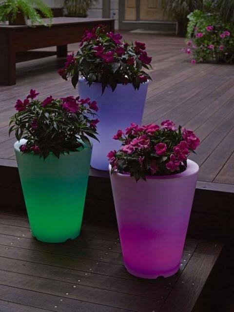 15-astonishing-illuminated-planter-designs (12)