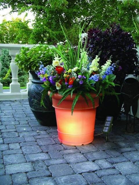 15-astonishing-illuminated-planter-designs (2)