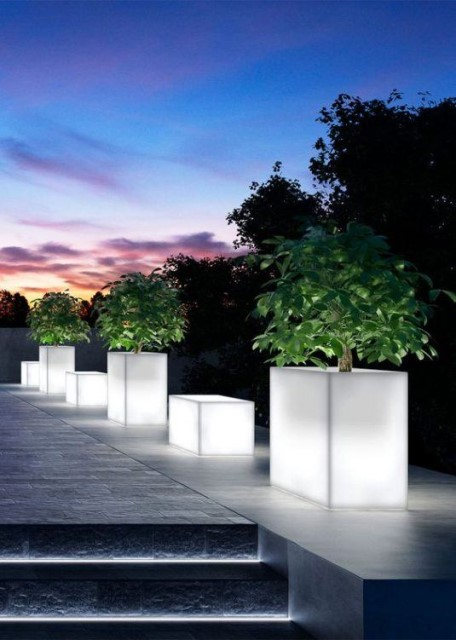 15-astonishing-illuminated-planter-designs (4)