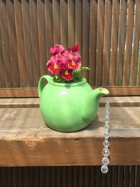 22-diy-ideas-old-teapot-to-flowerpot-13