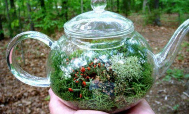 22-diy-ideas-old-teapot-to-flowerpot-19