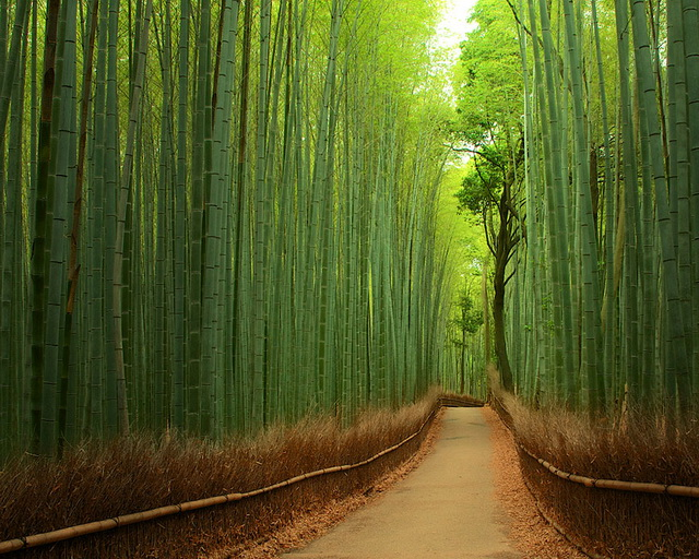 24-breathtaking-places-to-see-before-you-die (17)