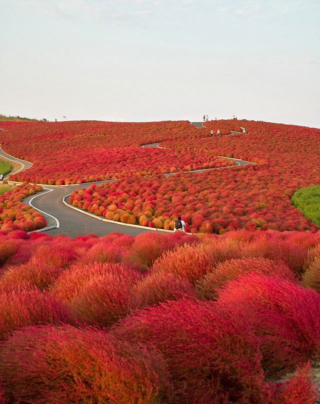 24-breathtaking-places-to-see-before-you-die (5)