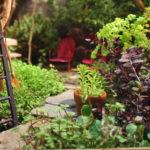 """3 เคล็ดไม่ลับ """"วิธีกำจัดวัชพืช"""" คงความสวยงามและความสดชื่น ให้อยู่คู่กับสวนสวยของเรา"""