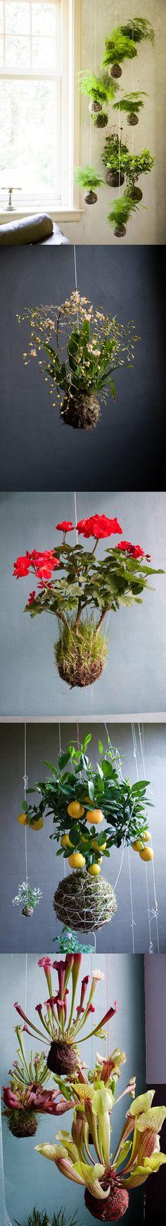 34-beautiful-hanging-garden-ideas-33