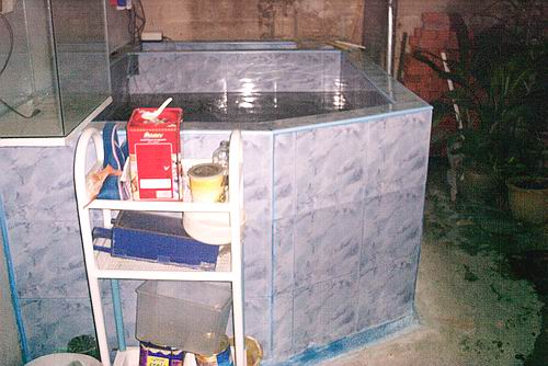 3k indoor fish pond review (19)