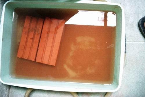 3k indoor fish pond review (7)