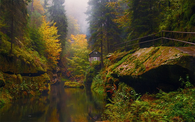45 cozy-cabins-in-the-woods (1)