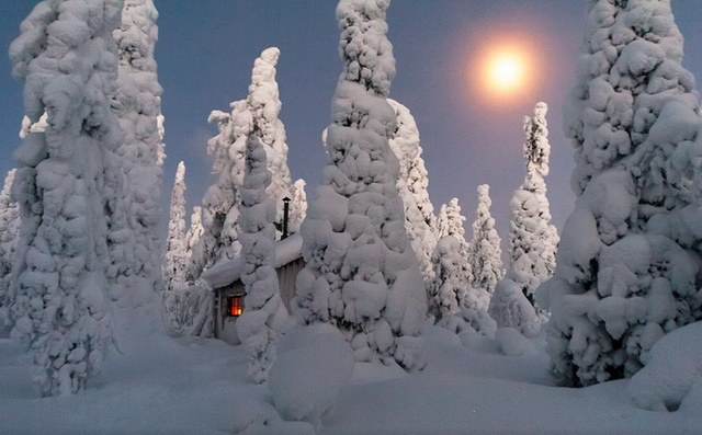 45 cozy-cabins-in-the-woods (13)