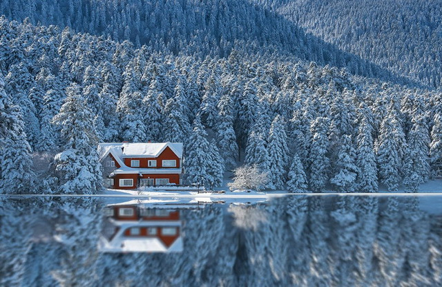 45 cozy-cabins-in-the-woods (21)